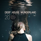 Deep House Wunderland, Vol. 1 (20 Groovy Master Pieces)
