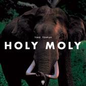 Holy Moly - Single, Tinie Tempah