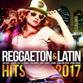 Reggaeton & Latin Hits 2017