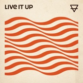 Sons Of Zion - Live It Up artwork