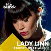 Raindrops On a Leaf (Live Uit Liefde Voor Muziek)