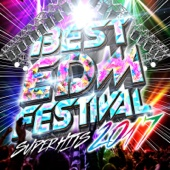 BEST EDM FESTIBAL -SUPER HITS 2017-