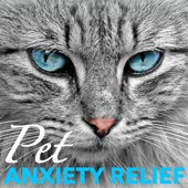 Pet Anxiety Relief - Relaxation Sounds of Nature for Calming Cat and Dog Nerves - Pet Music Maetro