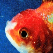 Big Fish Theory - Vince Staples Cover Art