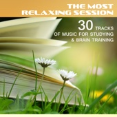 The Most Relaxing Session: 30 Tracks of Music for Studying & Brain Training – Calm Music to Working By, Reading, Focus & Learn