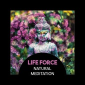 Life Force: Natural Meditation – Total Relaxing, Anxiety Free Life, Deep Hypnosis, Luqid Spirit of Mind, Buddha Treatments