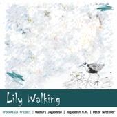 Lily Walking