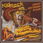 Kid Rock - Sweet Southern Sugar  artwork