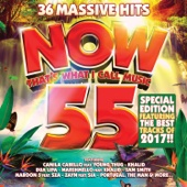 Various Artists - Now That's What I Call Music, Vol. 55 artwork