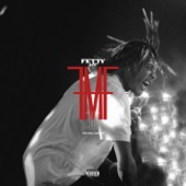 Fetty Wap - For My Fans  artwork