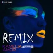 Amor (Studio 66 Remix)