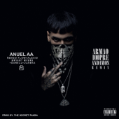 Armao 100pre Andamos (feat. Ñengo Flow, Darell, Bryant Myers, Alexio & Juanka) [Remix] - Anuel AA & The Secret Panda