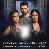 Download Paga De Solteiro Feliz (feat. Alok) MP3