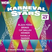Various Artists - Karneval der Stars 47 Grafik
