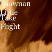 Shawnan Little - Take Flight  artwork