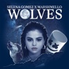 Download Lagu Selena Gomez & Marshmello - Wolves