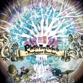 Plastic Tree Tribute~Transparent Branches~ - Various Artists