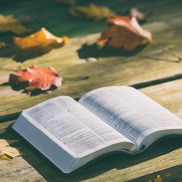 La Bible pas à pas – Radio Notre Dame