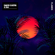 Flames - David Guetta & Sia