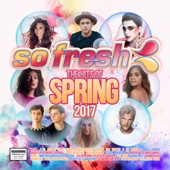 So Fresh: The Hits of Spring 2017 - Various Artists