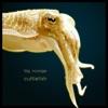 Cuttlefish - EP