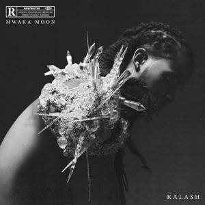 Kalash, Damso - Mwaka Moon