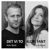 Asle Beck - Det vi to aldri fant (feat. Rita Eriksen) artwork