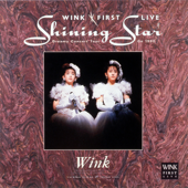 WINK FIRST LIVE Shining Star - Dreamy Concert Tour On 1990 -
