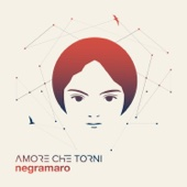 Negramaro - Fino all'imbrunire artwork