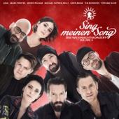 Sing meinen Song - Das Weihnachtskonzert, Vol. 4 - Various Artists