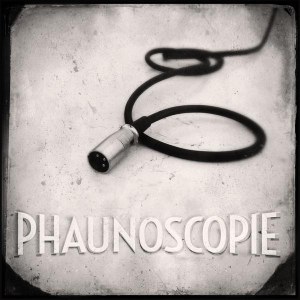 Phaunoscopie