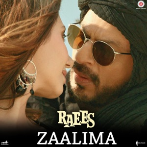 Chord Guitar and Lyrics RAEES – Zaalima Chords and Lyrics