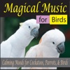 Magical Music for Birds Calming Moods for Cockatoos Parrots Birds