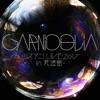 GARNiDELiA ~リスアニ!LIVE 2017 in  武道館~ - Single ジャケット写真