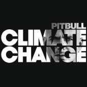 Options (feat. Stephen Marley) - Pitbull