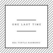 Sea Turtle Harmonic - Rolling in the Deep artwork