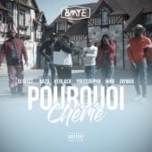 Pourquoi chérie (feat. Naza, Keblack, Youssoupha, Hiro, Jaymax & DJ Myst) - Single