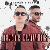 Te Pintaron Pajaritos (feat. Andy Rivera)