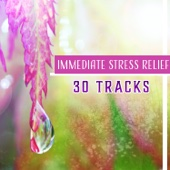 Immediate Stress Relief – 30 Tracks, Relaxation Music for Anxiety Disorders, Therapy Sounds for Meditation, Yoga, Peace & Balance