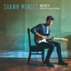 Mercy (Acoustic Guitar) - Single, Shawn Mendes
