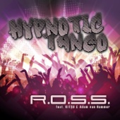R.O.S.S. & Adam van Hammer - Hypnotic Tango (DJ Quicksilver & C.J. Stone Mix) artwork