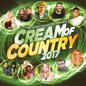 Various Artists - Cream of Country 2017 artwork
