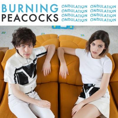 BURNING PEACOCKS