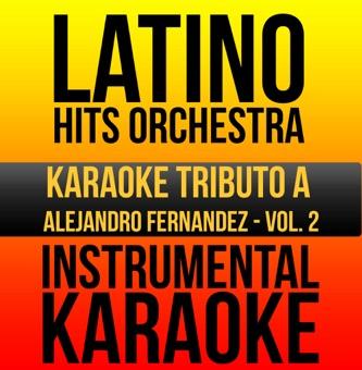 Instrumental Karaoke Series: Alejandro Fernandez, Vol. 2 (Karaoke Version) – Latino Hits Orchestra