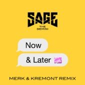 Now and Later (Merk & Kremont Remix) - Single