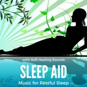 Sleep Aid: Music for Restful Sleep, Relax, Chakra Meditation with Soft Healing Sounds