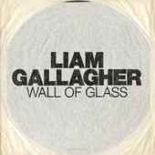 Wall of Glass - Single