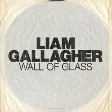 Wall Of Glass by Liam Gallagher