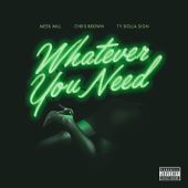 Whatever You Need (feat. Chris Brown & Ty Dolla $ign) - Meek Mill Cover Art