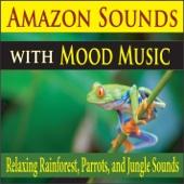 Pure Pianogonia - Deep Sleep Amazon Sounds (with Peaceful Piano) ilustración
